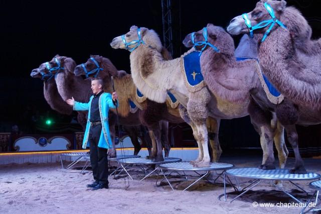 Chapiteaude News Thema Anzeigen Circus Belly Wien 2017